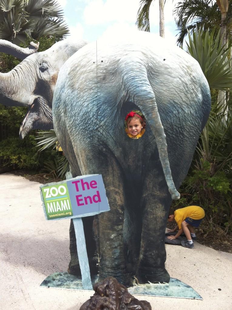 Zoo Miami Staycation