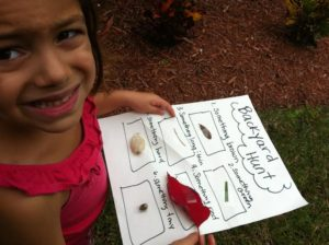 Make a Backyard Scavenger Hunt